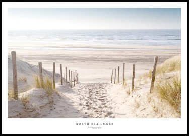 North Sea Dunes Poster