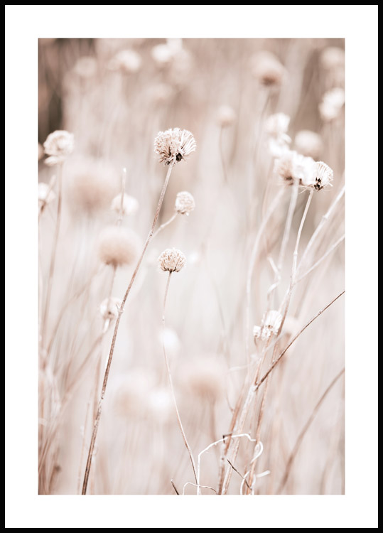 Pastel Grass Poster