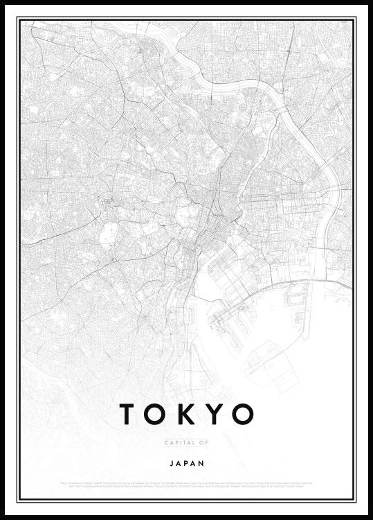 Map of Tokyo Poster